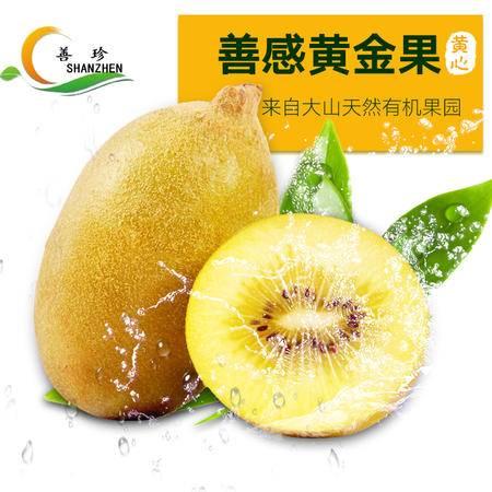 【善感果园】黄心猕猴桃  黄金果24个(泡沫箱)