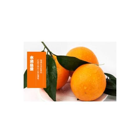 奉节脐橙(福本) 重庆特产 新鲜水果