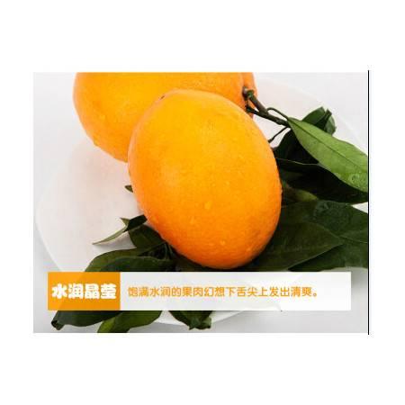奉节脐橙(纽荷尔) 重庆特产 新鲜水果10斤装