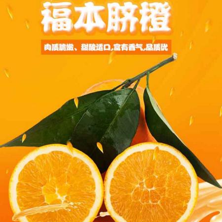 奉节脐橙福本5斤装