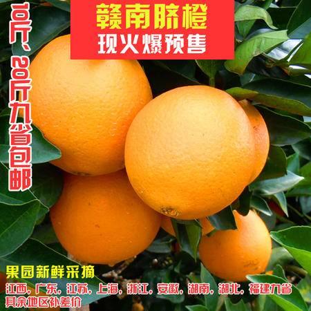 江西上犹特产正宗赣南脐橙现摘20斤装包邮 新鲜水果 香甜多汁