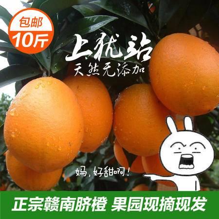 上犹特产正宗赣南脐橙现摘10斤装包邮 新鲜水果 香甜多汁