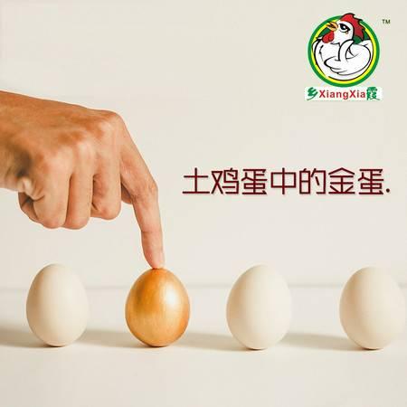 乡霞土鸡蛋 农家散养新鲜土鸡蛋80枚装
