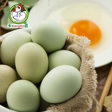 乡霞绿壳土鸡蛋 农家散养新鲜绿壳土鸡蛋40枚装