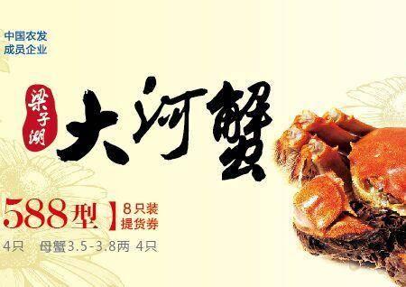 武汉梁子湖 梁子大闸蟹 1588型螃蟹套餐实物
