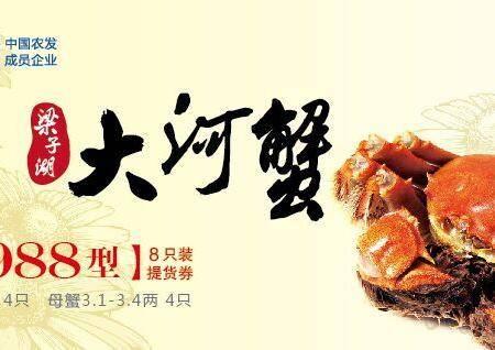 武汉梁子湖 梁子大闸蟹 988型螃蟹套餐实物