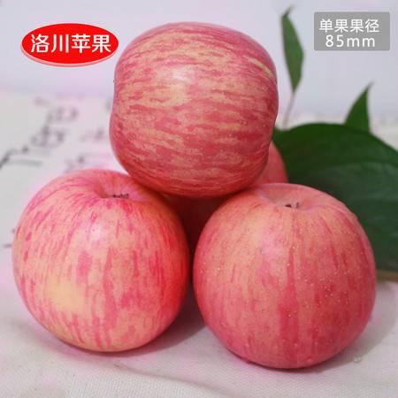 陕西苹果洛川苹果红富士苹果40枚85约23斤左右新鲜水果