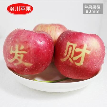正宗陕西洛川苹果水果红富士苹果贴字艺术果礼盒装12枚非烟台苹果