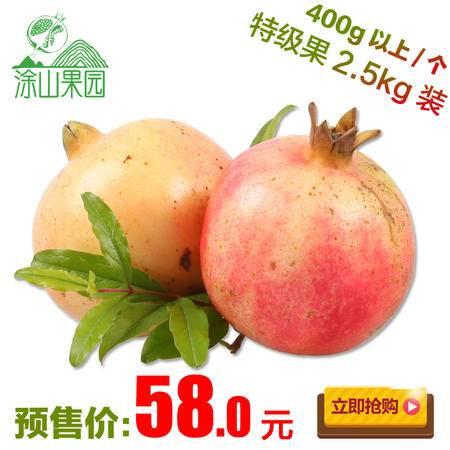 涂山果园 果园直发怀远石榴新鲜水果红花玉籽甜石榴XL型2.5kg包邮