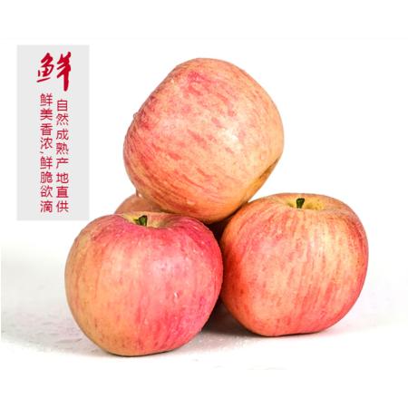 宝峰冰心苹果