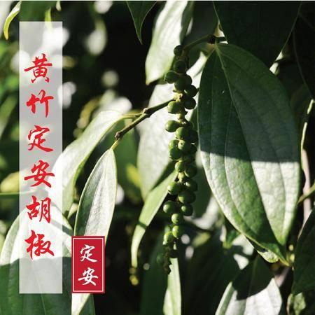 海南特产 定安黄竹黑胡椒1斤装