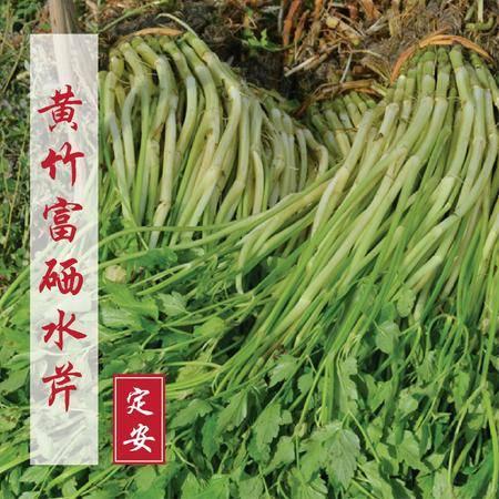 海南特产 定安黄竹定安富硒水芹10斤