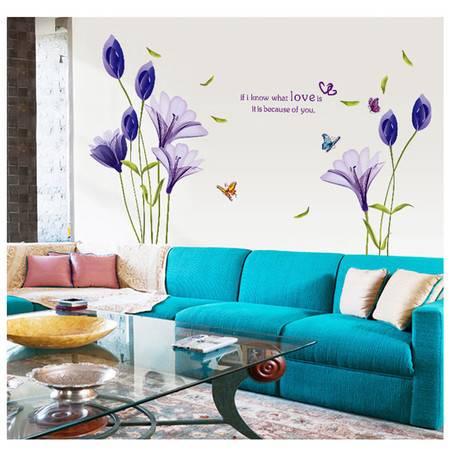 海韵生 PVC环保可移除装饰贴墙贴客厅电视背景墙壁贴纸