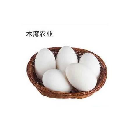 【木湾农业】散养鹅蛋 10个装