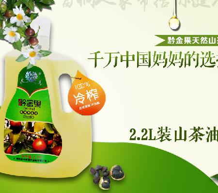 贵州黔东南黎平县黔金果山茶油磨砂2.2L
