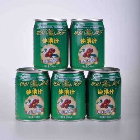 大源野沙果汁饮料240ml