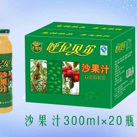 大源野沙果汁饮料300ml