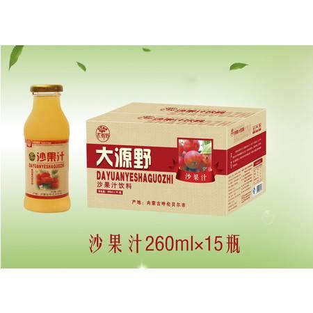大源野沙果汁饮料260ml