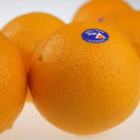 奥特朗 进口澳洲脐橙新鲜水果 222g*20/箱