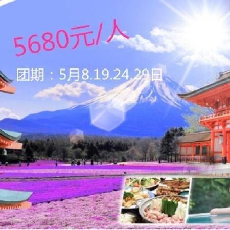 日本精致六日游
