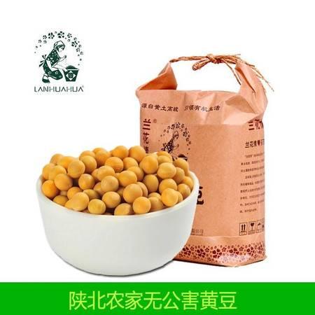 【兰花情】陕北黄豆 每袋净重2.5kg