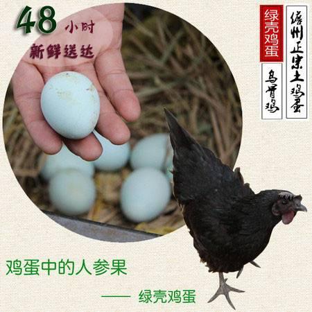 正宗海南农家绿壳鸡蛋 农村农民散养土鸡蛋 30枚一盒