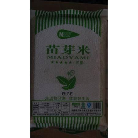 天长特产 牧马湖 五星苗牙 (5kg)(滁州)