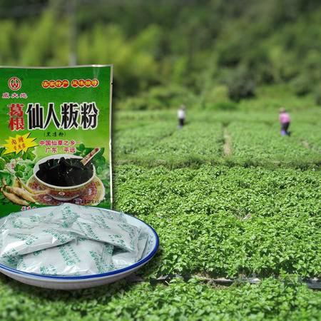 葛根仙人粄粉 清凉开胃解暑 葛根 仙草粉 10小包袋装200g