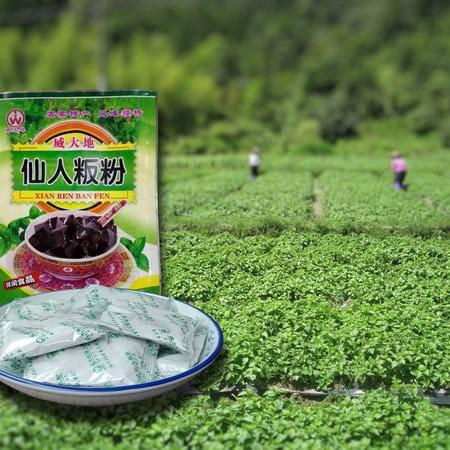 仙人粄粉 清凉开胃解暑 仙草粉 10小包袋装200g