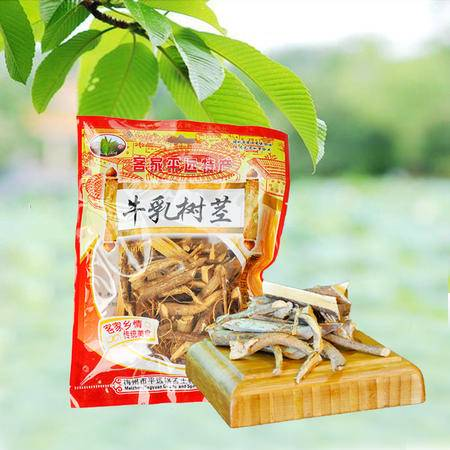 锅叾牌袋装140克牛乳树茎013