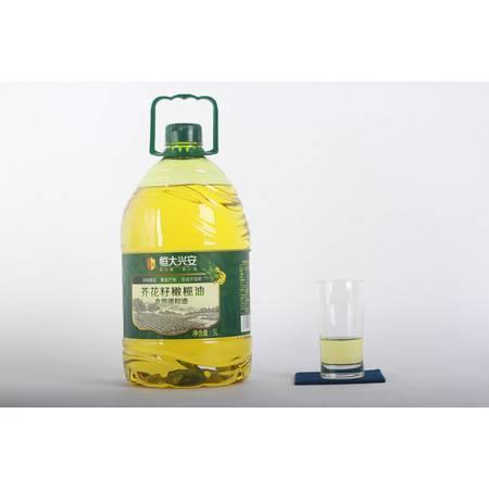 香龍食 重庆市开县恒大兴安芥花籽橄榄油5kg