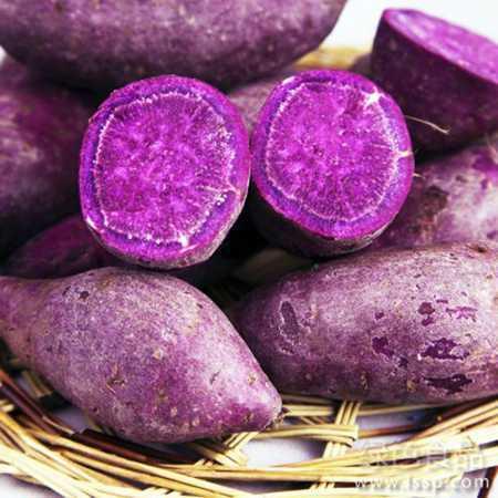 【邮乐河南】新鲜紫薯 农家自种 散装 5斤装 包邮
