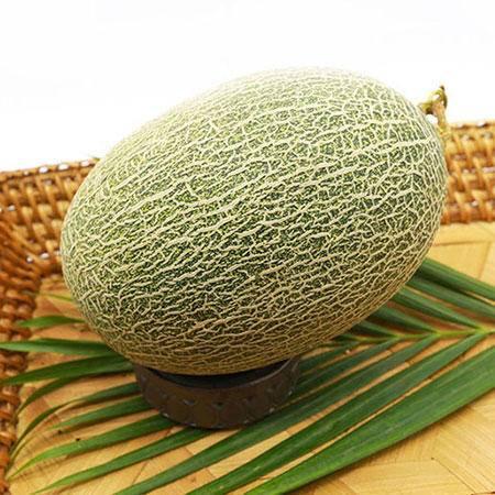 西双版纳爱赶摆生态哈密瓜