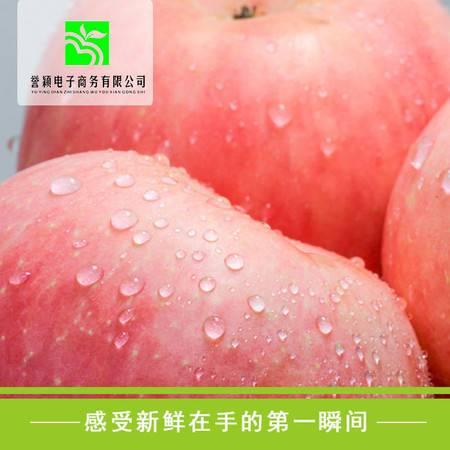 24枚85#陕西洛川水果红富士有机苹果不打蜡无催红无农药带皮吃