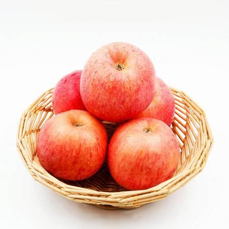 12枚85#陕西洛川水果红富士有机苹果不打蜡无催红无农药带皮吃