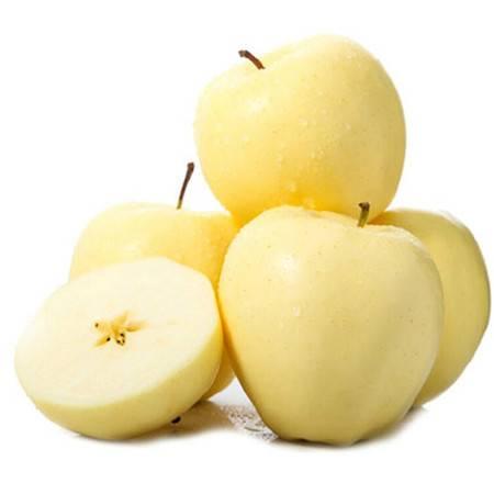吉春新鲜水果奶油富士黄苹果黄金富士 烟台栖霞苹果5斤 包邮