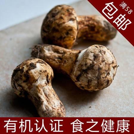 松茸干货特级松茸养生干品特产108g