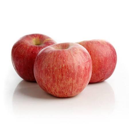泉盛隆 高品质苹果 洛川甜苹果5斤装