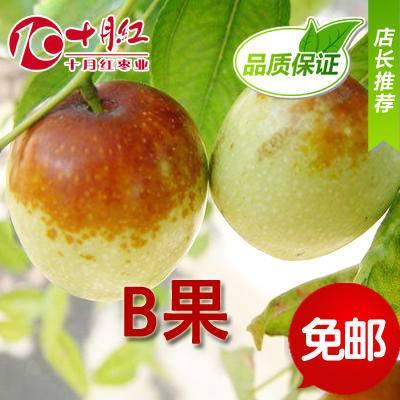 十月红 100%正宗黄骅冬枣 新鲜 鲜枣 脆甜五斤/箱 原产地发货 B果