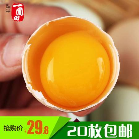 仙福农家野外散养新鲜土鸡蛋初生笨鸡纯粮草喂养纯天然月子蛋20枚包邮