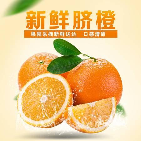 湖北鲜橙 农家果园 酸甜可口 15斤包邮 单个果重200g-300g