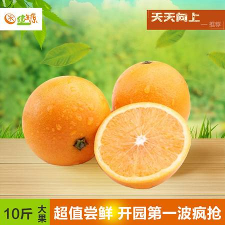 健生源正宗湖南麻阳冰糖橙新鲜水果纯天然10斤大果农家麻橙现摘现发