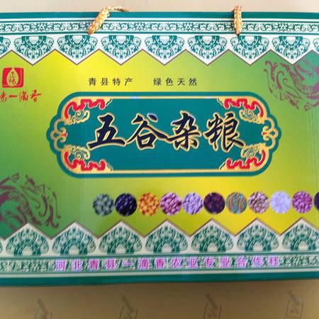 【河北特产】一滴香 五谷杂粮10袋礼盒装 4000g