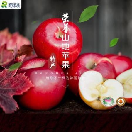 荣华农业陕西山地红富士苹果有机水果30粒75mm天地盖箱装包邮批发