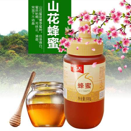 众天 秦岭野生百花蜂蜜500g