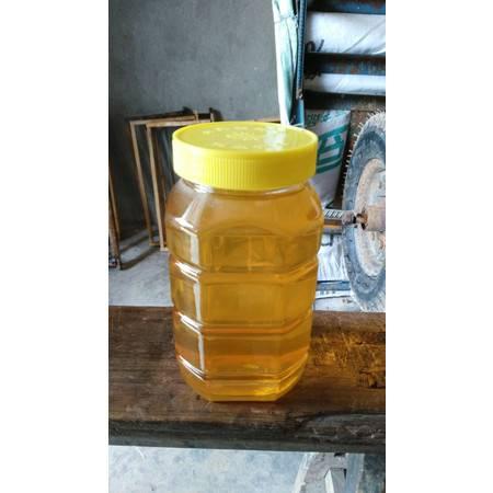 长寿特产 农家自产 土蜂蜜 2斤/罐