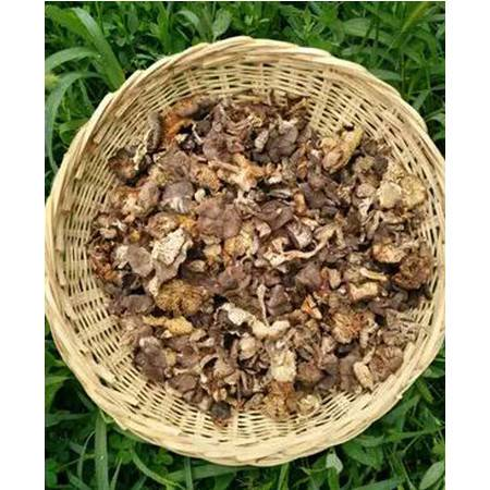 扶贫助农 农家自产 涞源特产 小灰蘑菇 500克包邮