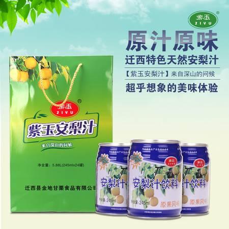 安梨汁酸梨汁果汁饮料冬季热饮馈赠佳品245ml*24礼盒装