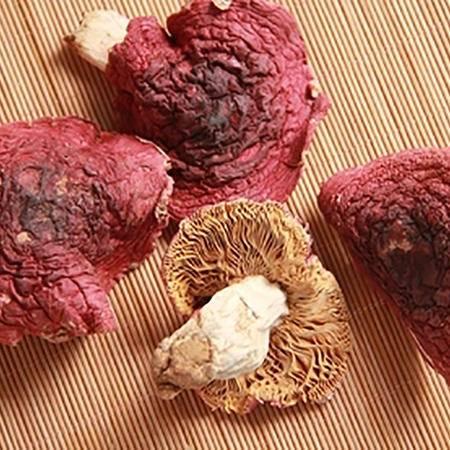 [精准扶贫-三明馆]红菇 野生正宗红菇 深山野生福建特产特级干货 养生月子50g