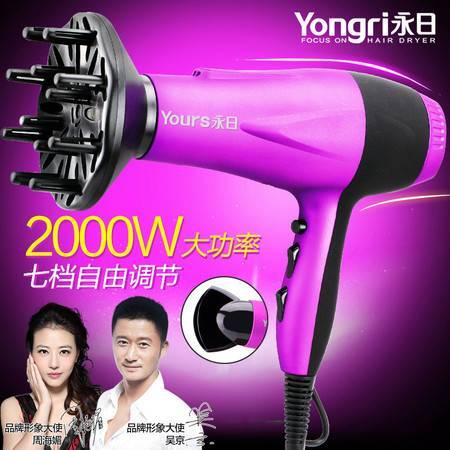 永日正品 美发专用吹风机 超静音离子大功率吹发机 电吹风YR-6227